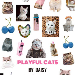 DOG×DAISY プロデュース2 PLAYFUL CATS