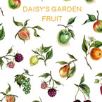 DAISY プロデュース8 DAISY'S GARDEN FRUIT