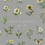 DAISY プロデュース9 DAISY'S GARDEN WHITE